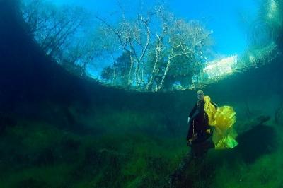фотовыставка «Прогулки под морем»