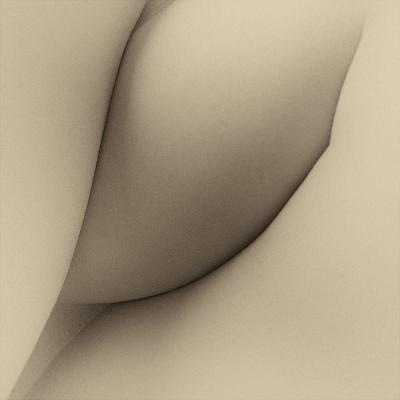 «Вектор тела», автор Александр Паньковец
